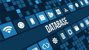 Postgres Database Developer